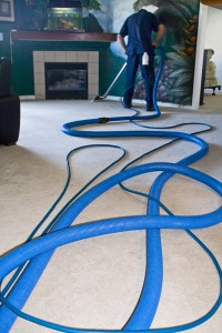 Palm Beach Professional-Carpet-Cleaners