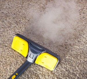 Professional-Steam-Carpet-Cleaners Palm Beach